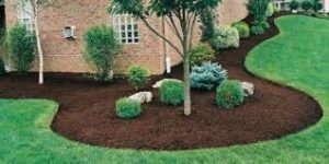 Garden Mulch Helps Waterways