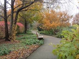 Parland mulch helps waterways
